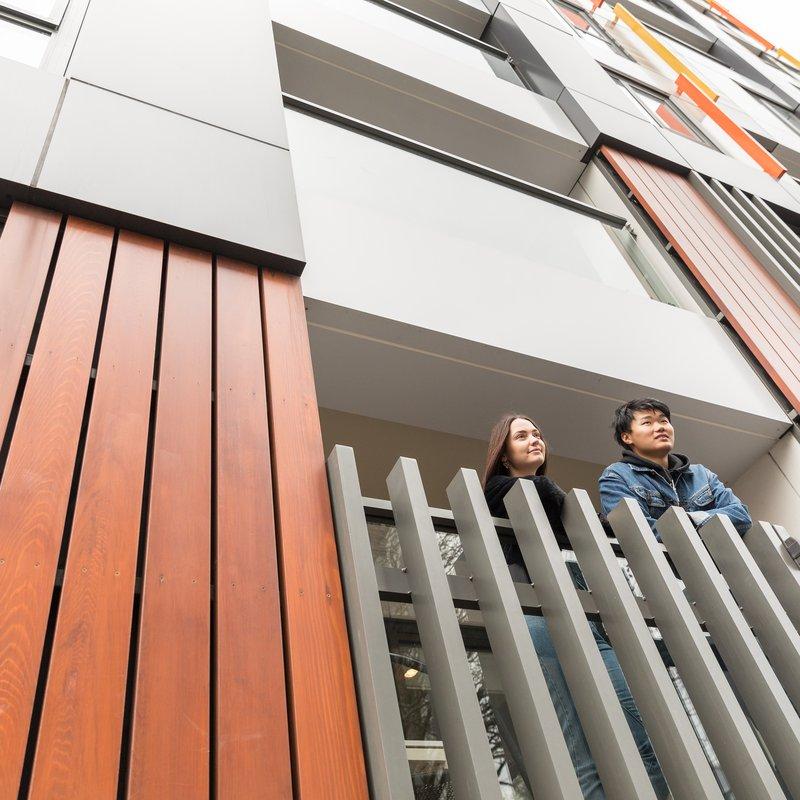 Auckland Apartment
