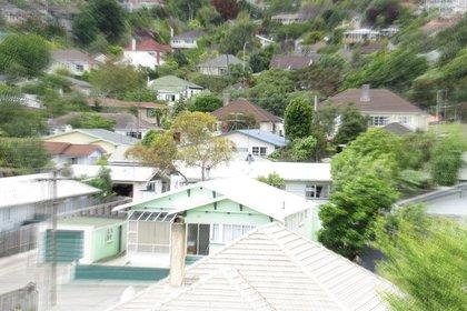 houses-nelson-dec20.jpg